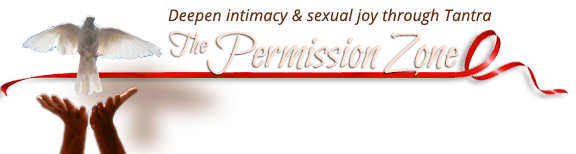 The Permission Zone
